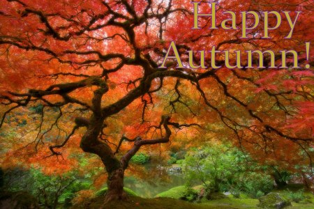 autumn-scene-wallpaper-7-717781